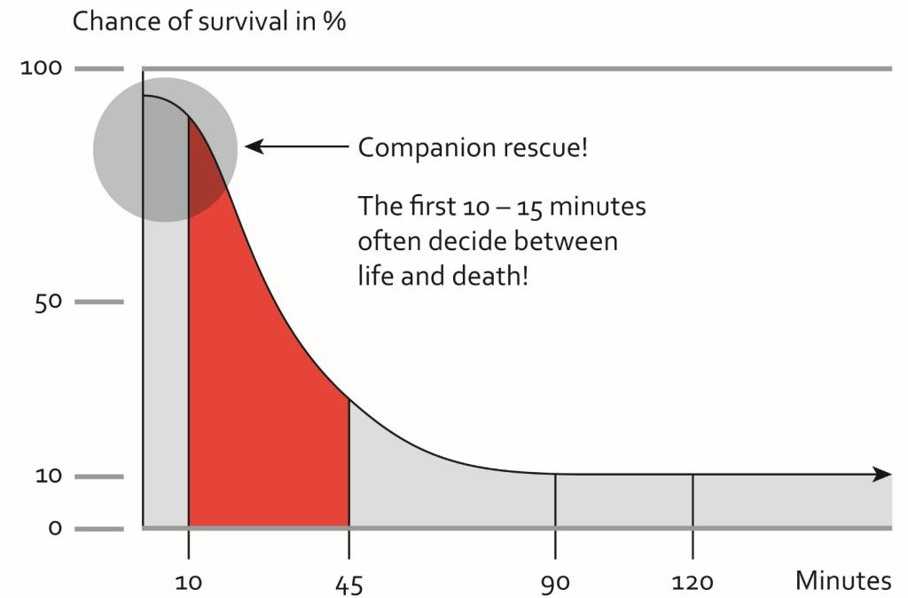 Companion rescue! Statistic 10-15 minutes